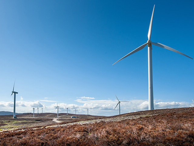 Kimberly-Clark have made a huge renewable energy agreement.