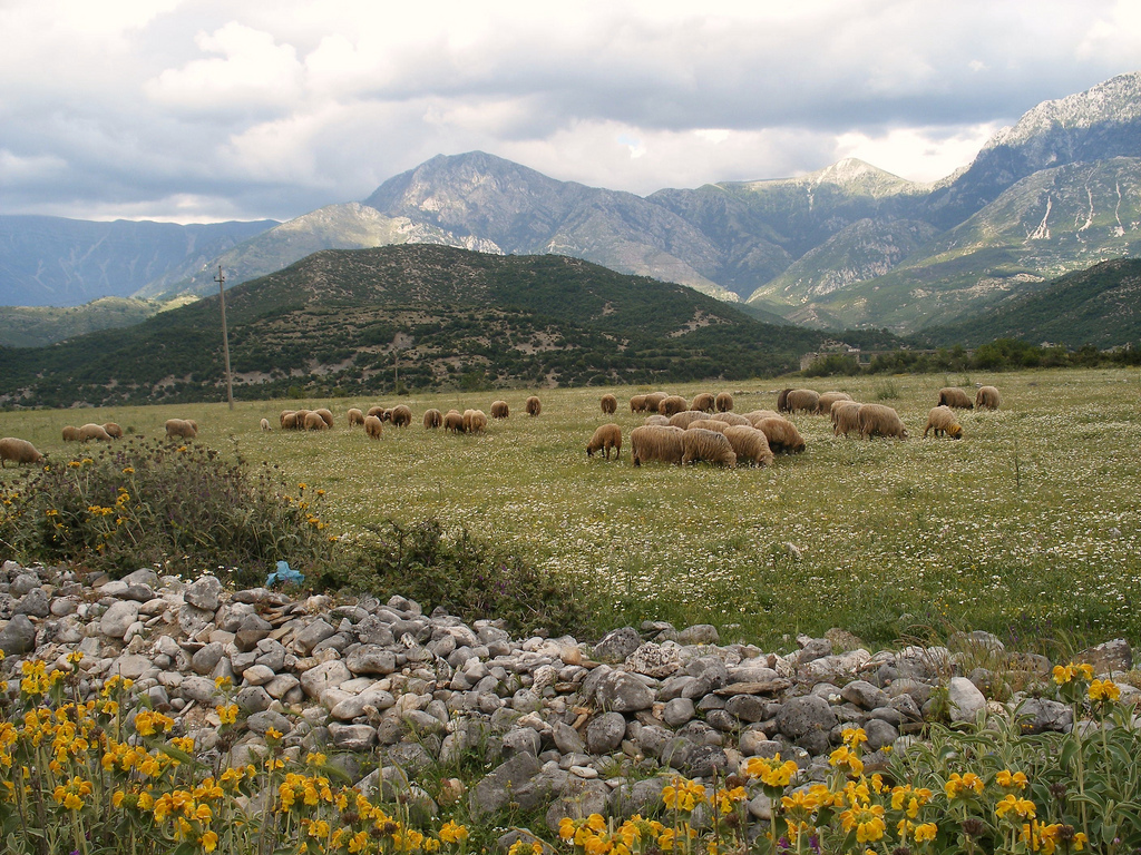 The Albanian countryside. Picture by godo godaj, Wikipedia.