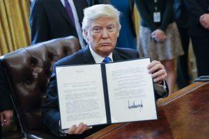 The story of Trump solar tariffs: layoffs and liquidations