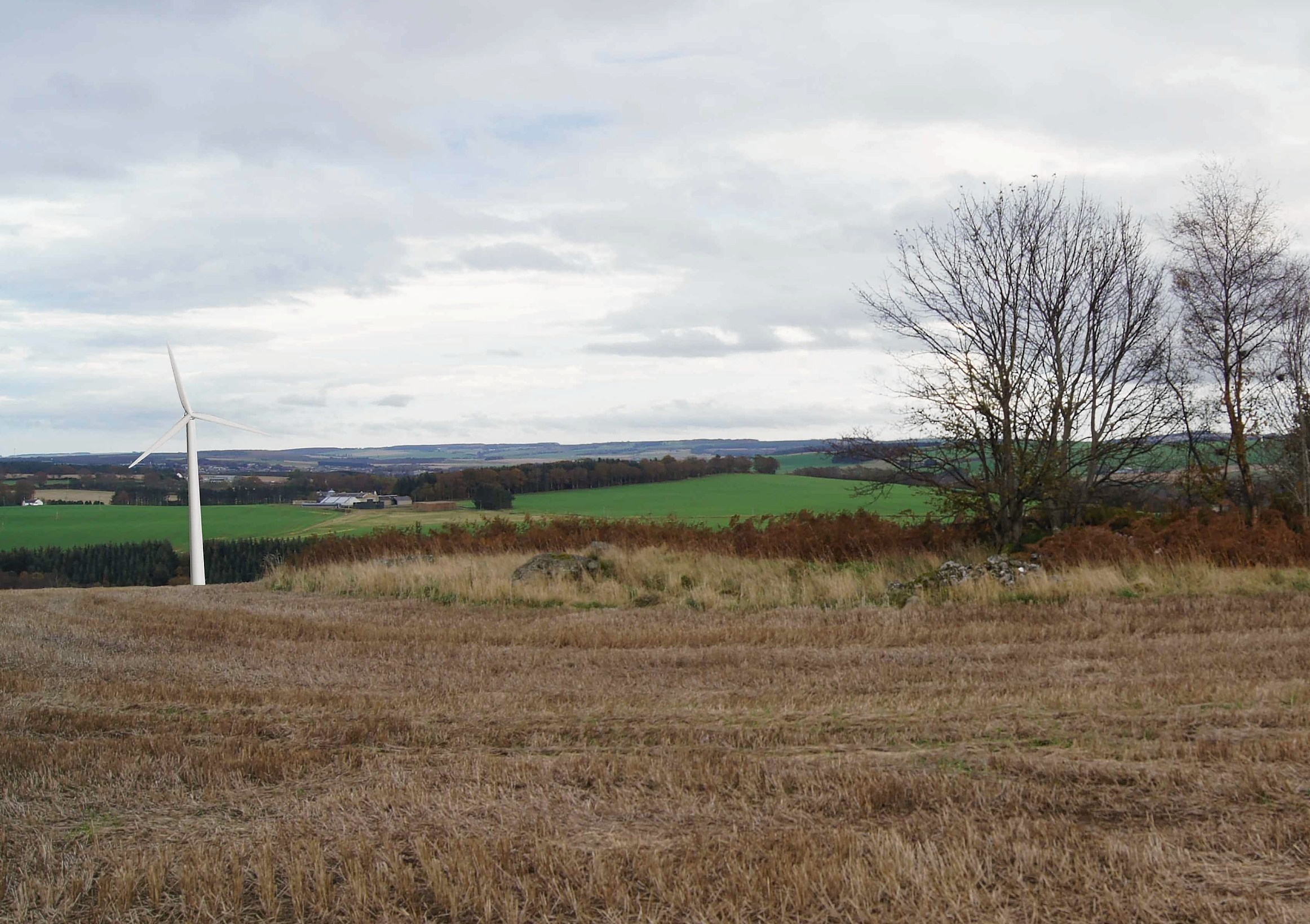 "North-east councillors who approved a controversial wind turbine application from their colleague have been branded ""blatant cronies"" after it emerged they were lobbied.  SNP councillor for Turriff Sandy Duncan first lodged proposals to build a 150ft turbine at his Beechwood property at Forglen three years ago"