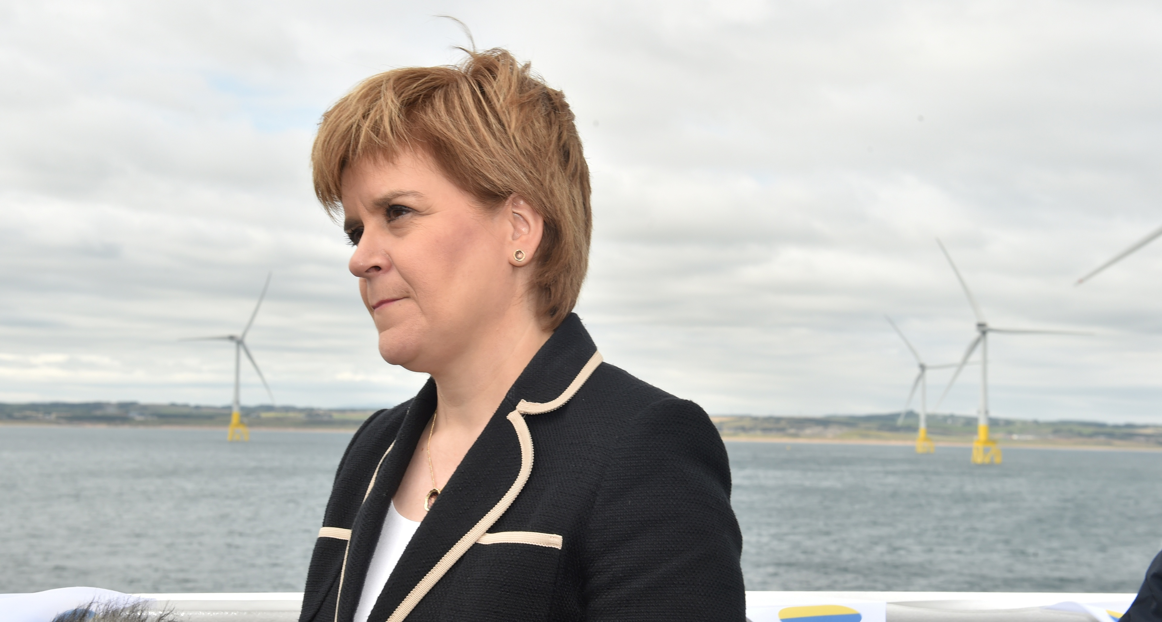"First Minister Nicola Sturgeon has said she will ""convene a summit"" over the fairness of wind farm contracts."