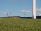 Wind turbines at the Hornsdale Wind Farm stand in crops of lucerne near Jamestown, Australia on Friday, Sept 29, 2017. Photographer: Carla Gottgens/Bloomberg *** Local Caption *** XXXXX