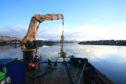 Pic: Scottish Aquaculture Innovation Centre (SAIC)