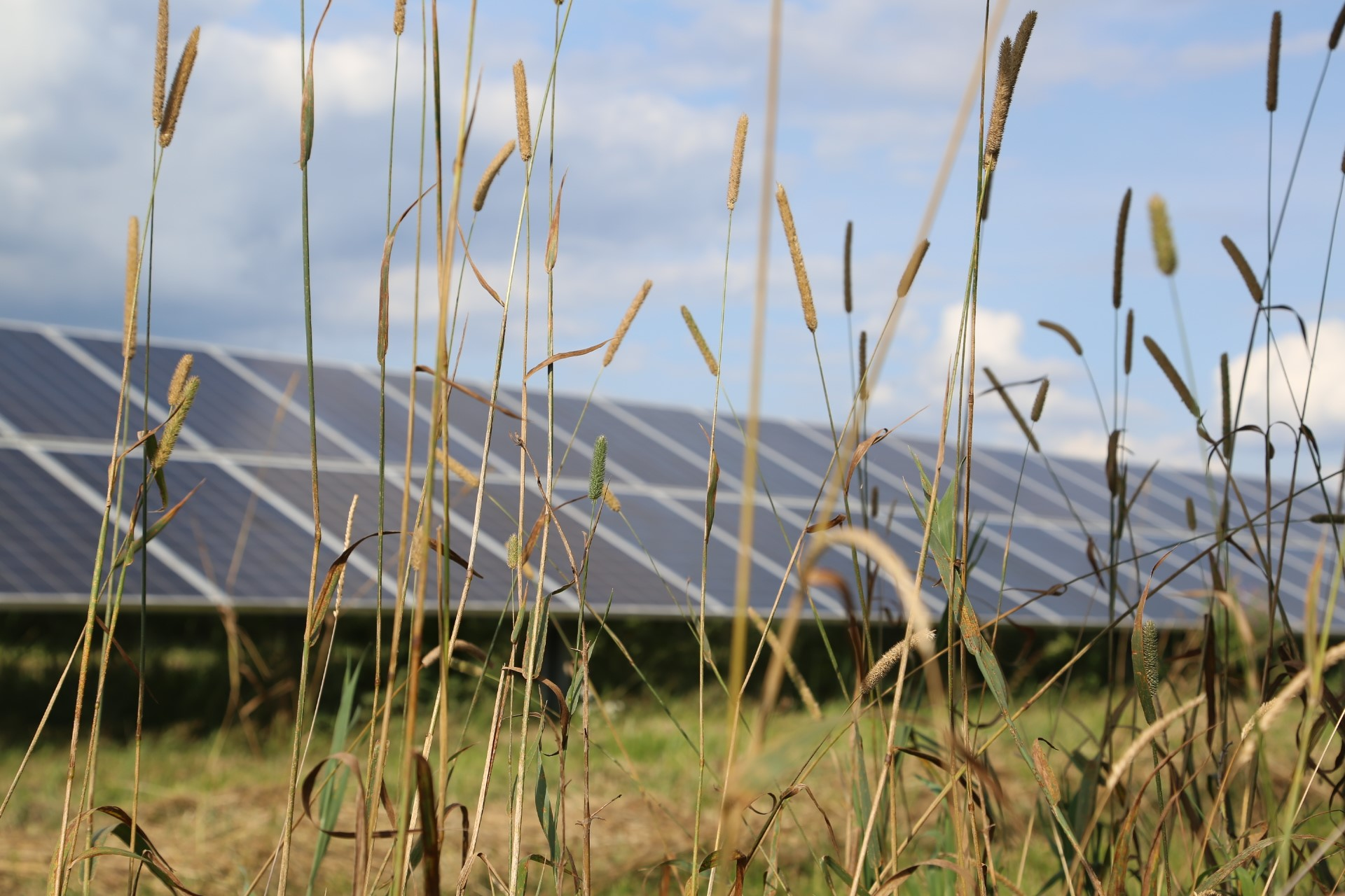 UK solar firm secures almost £50m backing for Spanish projects
